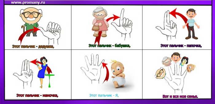 пальчиковая гимнастика семья пальчиков